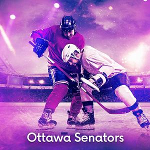 Ottawa Senators Image